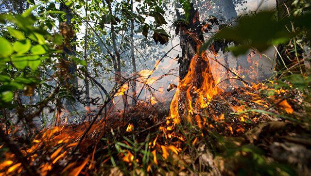 Опасная жара: в Крыму продлили экстренное предупреждение