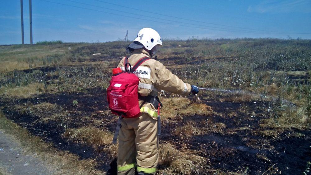 Сергей Шахов: в Крыму зафиксирован рост загораний сухой растительности