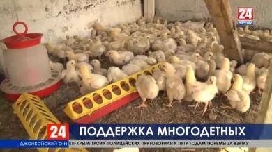 Государственная помощь: как в Крыму поддерживают многодетные семьи?