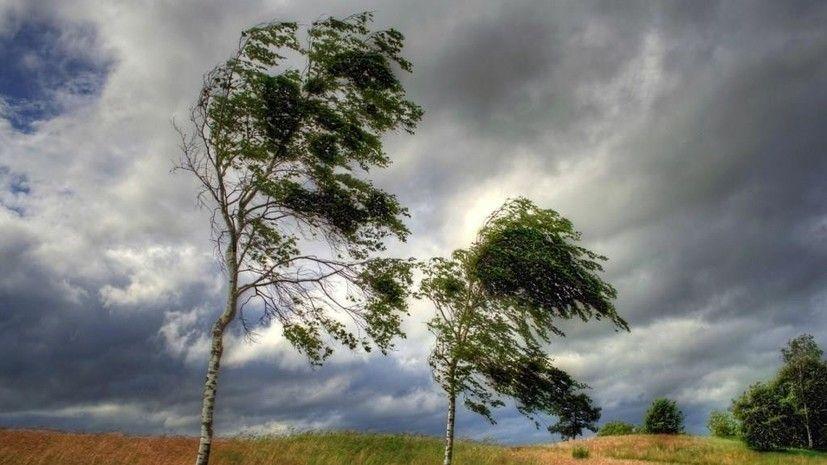 В Крыму объявили штормовое предупреждение из-за ветра до 25 м/с