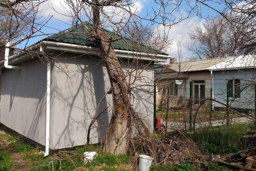 Представляющие опасность деревья в Симферополе нужно убрать и посадить новые, — Маленко
