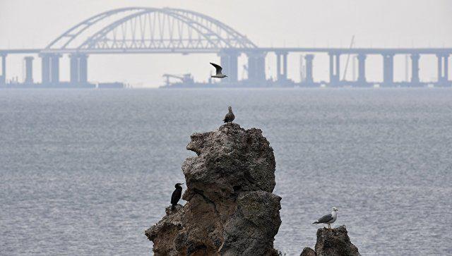 Главком Росгвардии оценил безопасность в Керченском проливе