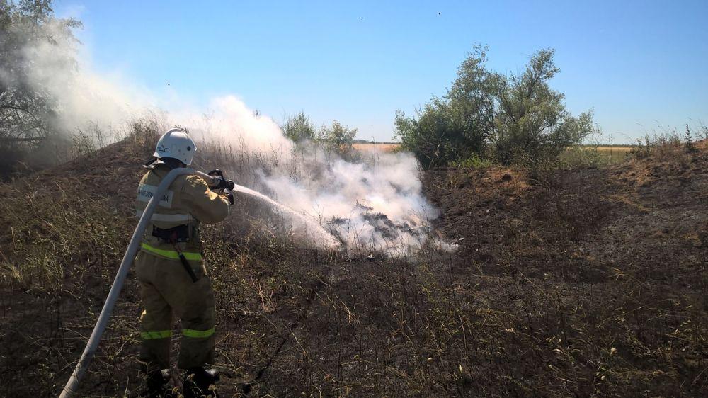 Возгорание поля пшеницы в Кировском районе ликвидировано