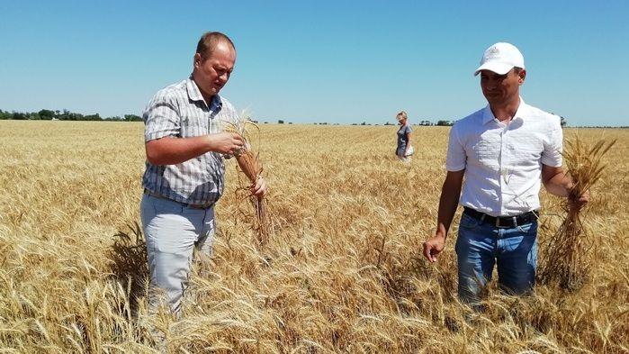 Руслан Комиссаров совместно с рабочей группой по легализации предпринимателей посетил сельхозугодья Советского района