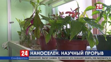 Крымские учёные нашли способ, как вырастить урожай на засушливых территориях