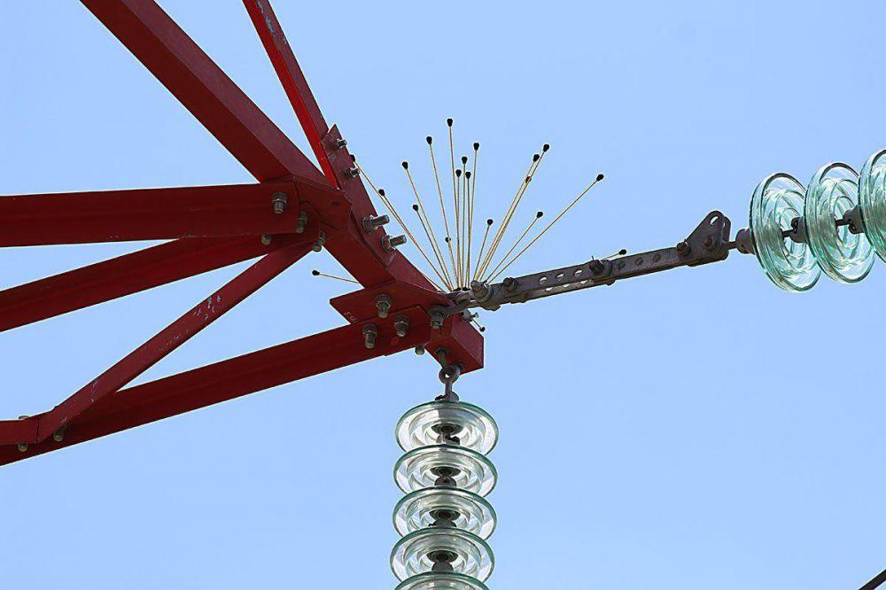 «Крымэнерго» принимает меры для защиты птиц от взаимодействия с линиями электропередачи