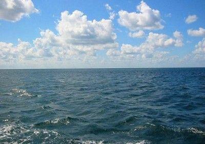 В Севастополе еще три года будут сливать нечистоты в море