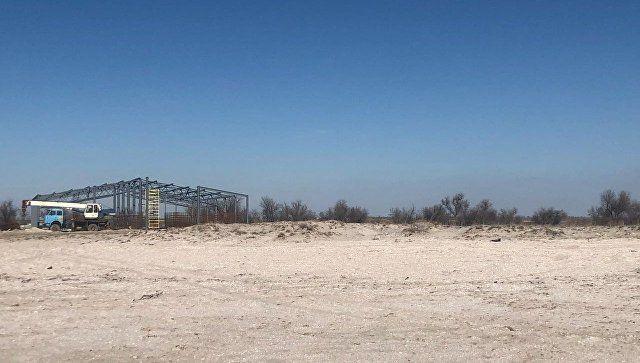 Строительство креветочной фермы в Крыму прекращено - Поклонская