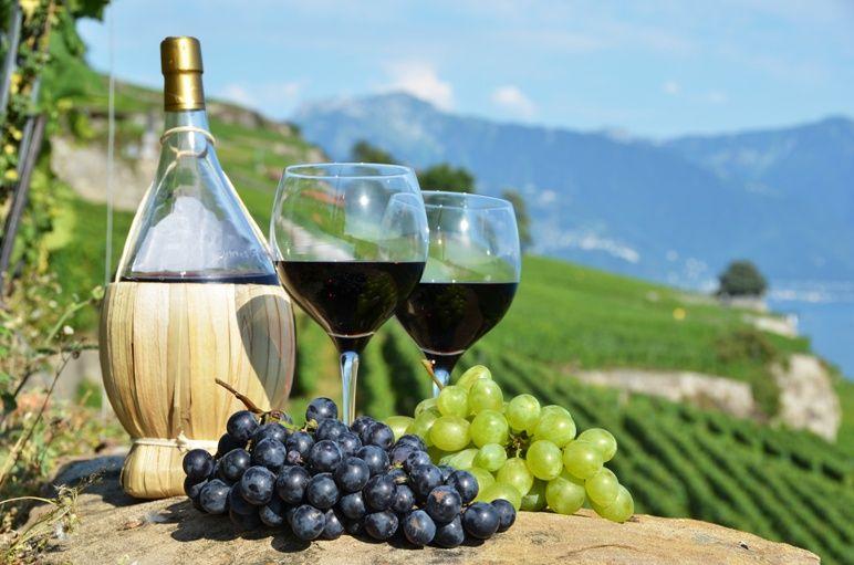 Производство российского вина может выйти на новый уровень благодаря господдержке, — Козенко