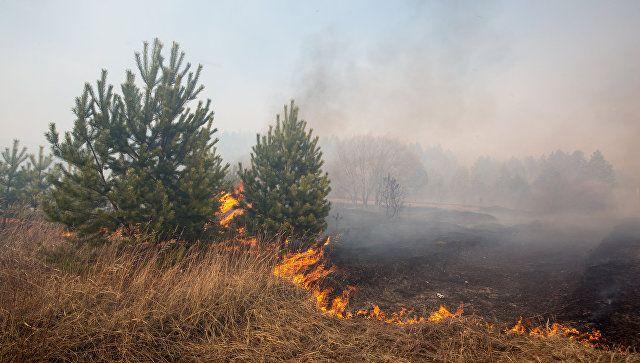Походы без костров: в Крыму высокая пожароопасность