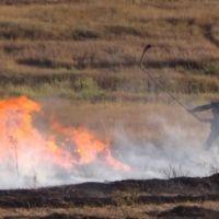 За выходные дни в Крыму ликвидировано 58 пожаров