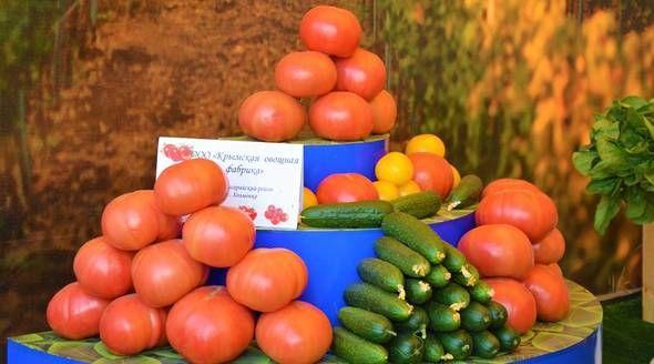 Рост урожая тепличных овощей позволит сохранить летние цены до декабря