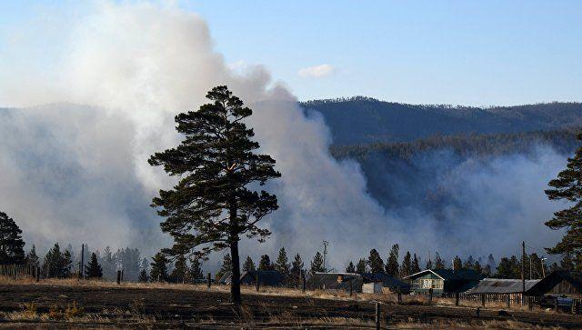 Авиация Минобороны потушила более 750 тысяч га горящего леса в Сибири