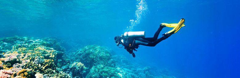 В Крыму один дайвер ранен из подводного ружья, а другой погиб