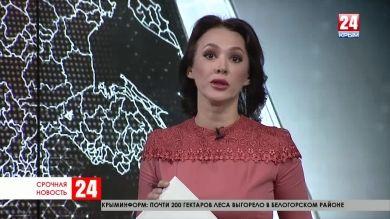 Пассажирка прокомментировала экстренную посадку рейса Москва – Симферополь