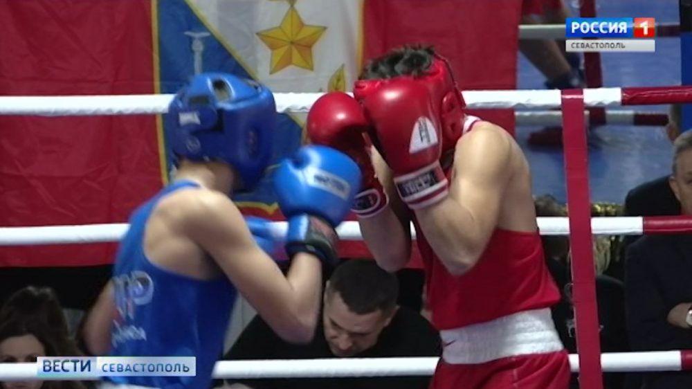 В Севастополе впервые стартовал кубок городов-героев по боксу