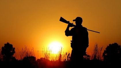 В Ялте запрещена охота до 30 сентября