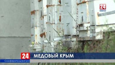 Больше 8 миллионов рублей Республика выделила на грантовую поддержку начинающих пчеловодов