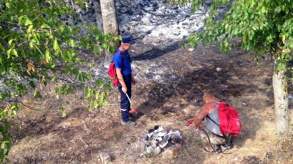 За прошедшие 3 дня крымские огнеборцы 35 раз привлекались к ликвидации пожаров, связанных с возгоранием сухой растительности