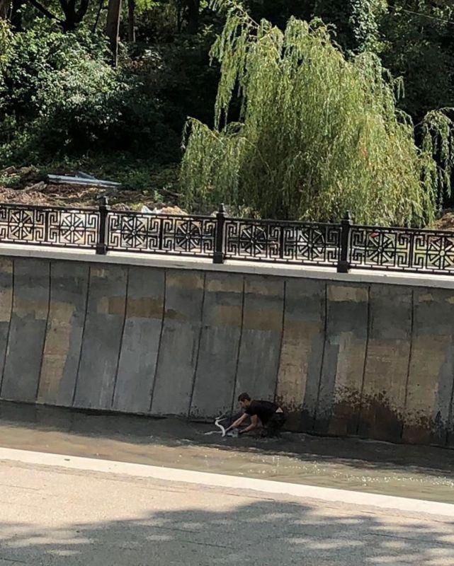 Мертва? В центре Симферополя пытались похитить живущую в Салгире цаплю, - источник