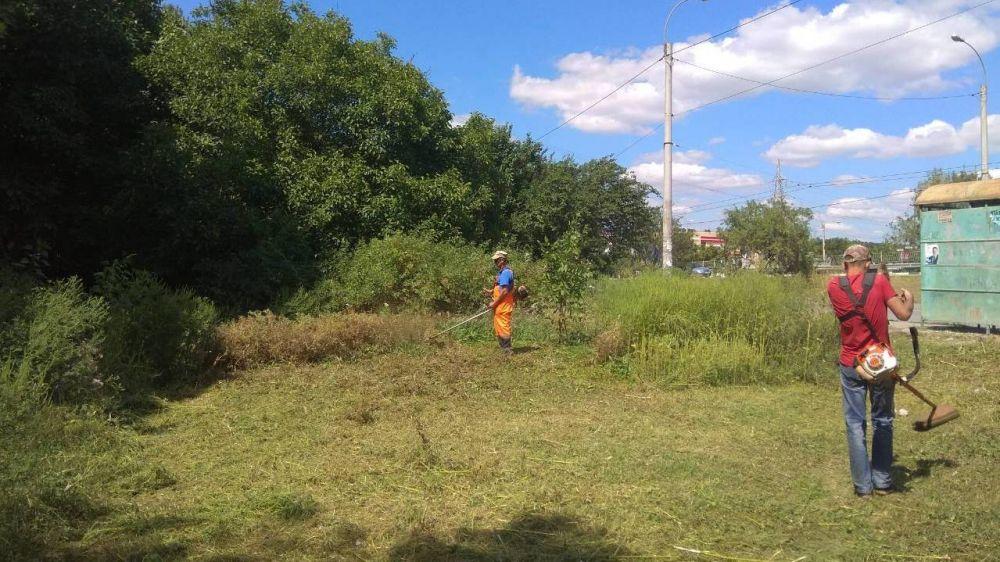Покос травы – работа в усиленном режиме