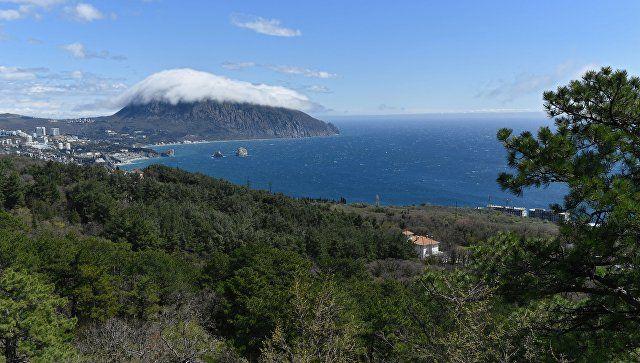 В Крыму оценили предложение Зеленского обменять полуостров на участие в G8