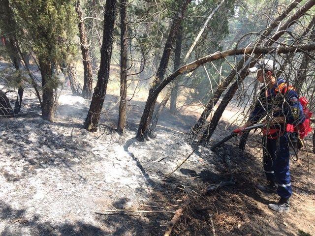 Пожар на горном хребте Кара-Бурун потушили в Крыму