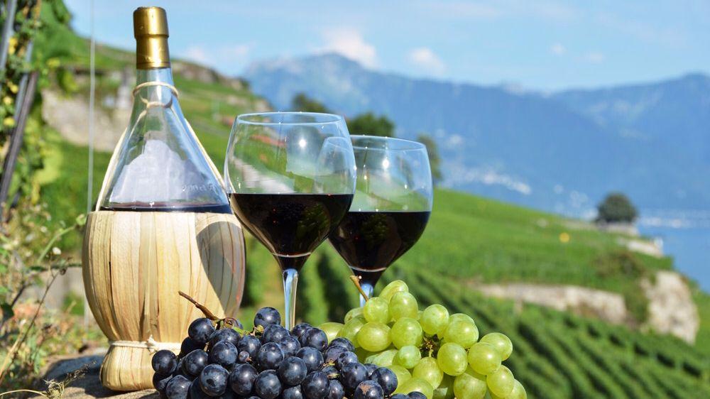 Поздравление Главы Республики Крым с Днём виноградарства и виноделия