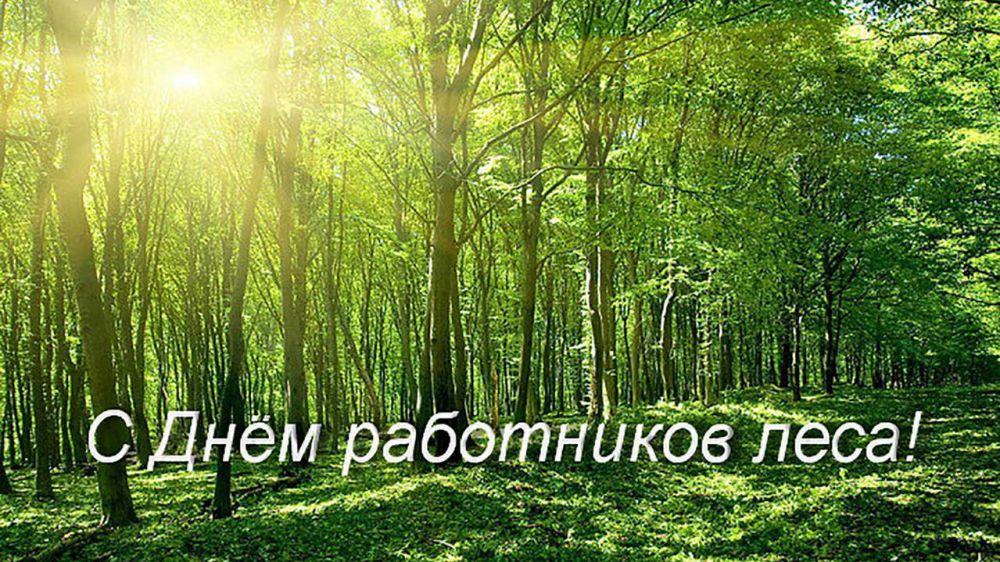 Дорогие работники леса, поздравляем вас с профессиональным праздником!