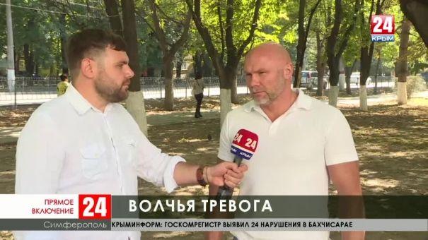 В Крыму зафиксированы случаи нападения волков на людей