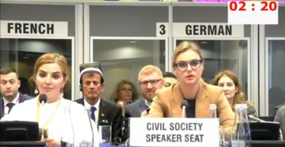 Канада, Франция и Украина покинули зал заседаний ОБСЕ после начала выступления Марии Волконской