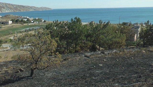 Последствия крупного пожара близ поселка Орджоникидзе