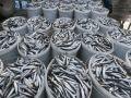 Квоты на вылов хамсы в Черном море сократились в два раза