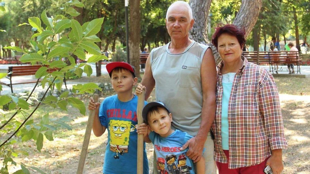 «Семейное дерево» для Детского парка
