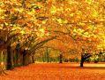 2 октября в Симферополе будет тепло и сухо