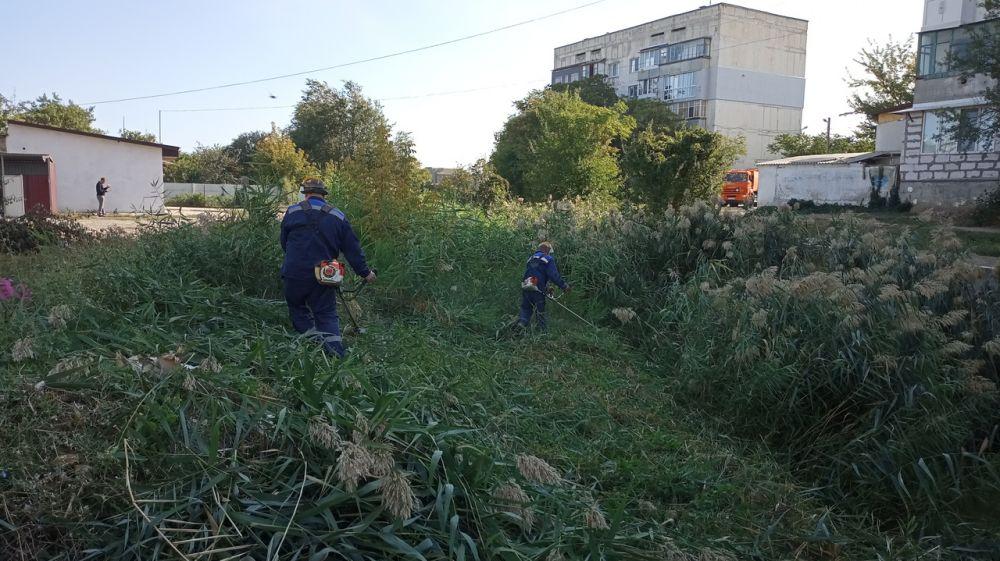 Игорь Вайль: Госкомводхозом разработан проект по расчистке русел рек Таракташ и Карагач