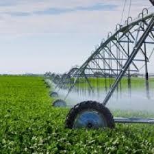 360 млн рублей потратили на орошение пяти тысяч гектар земель в Крыму
