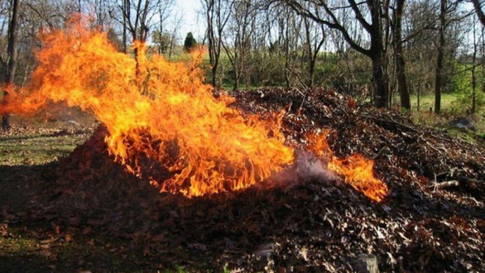 МЧС Республики Крым предупреждает: сжигание листвы может привести к пожарам!