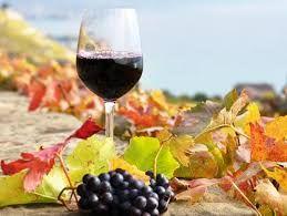 Натуральное вино — это пищевой продукт и его надо освободить от налогов, — эксперт