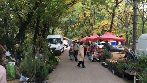 Ян Латышев: На расширенной Осенней сельскохозяйственной ярмарке в городе Симферополе розничные цены были на 25% ниже рыночных цен