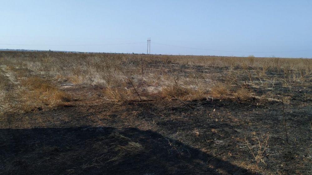 За прошедшие 3 дня сотрудники ГКУ РК «Пожарная охрана Республики Крым» ликвидировали 8 возгораний общей площадью около 3 Га