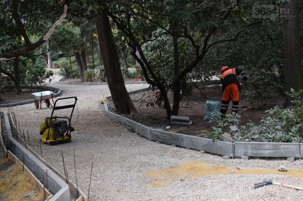 Некоторые деревья повреждены, но работы в Пионерском парке ведутся строго по документации, - власть