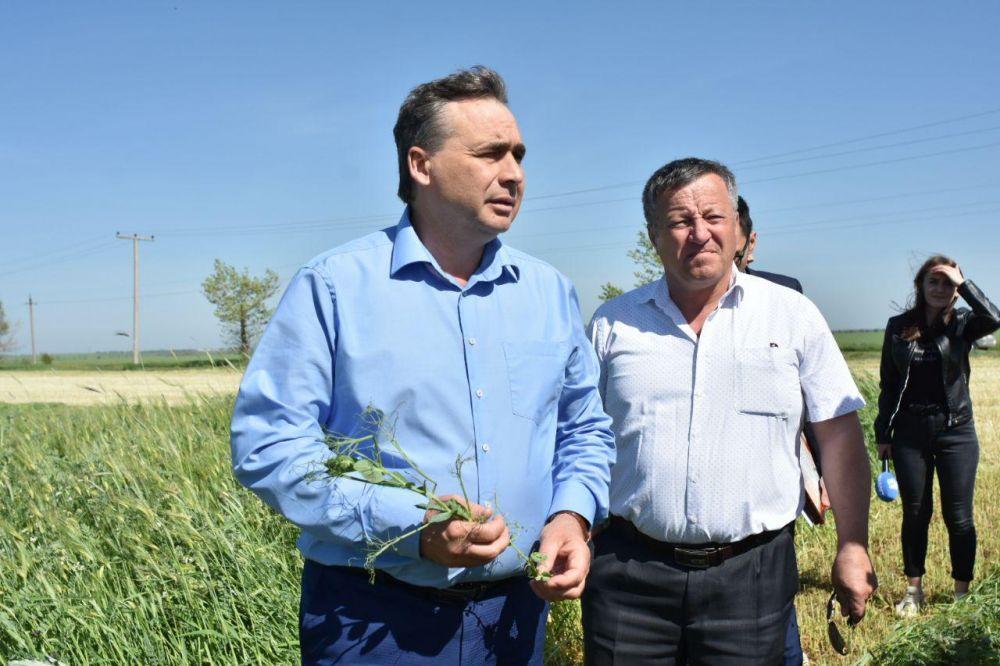 Рюмшина назначили на должность запредседателя Совмина — министра сельского хозяйства республики