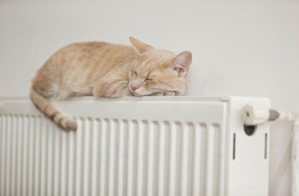 Севастопольцам включили отопление