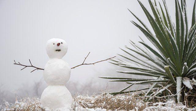 От жары к морозам: в Крыму ожидается первый снег