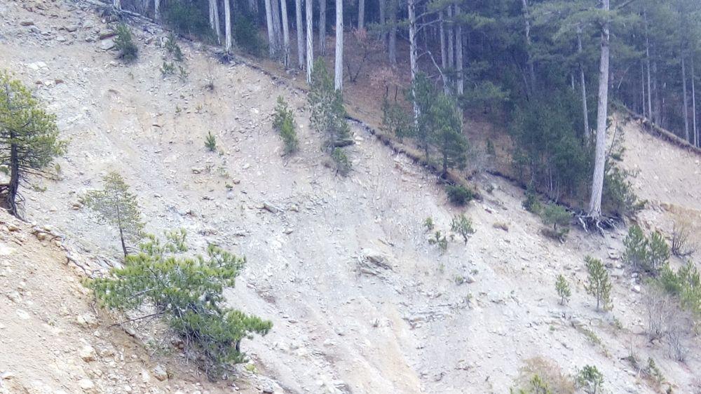 """Ялтинские спасатели """"КРЫМ-СПАС"""" эвакуировали туриста из опасного места"""