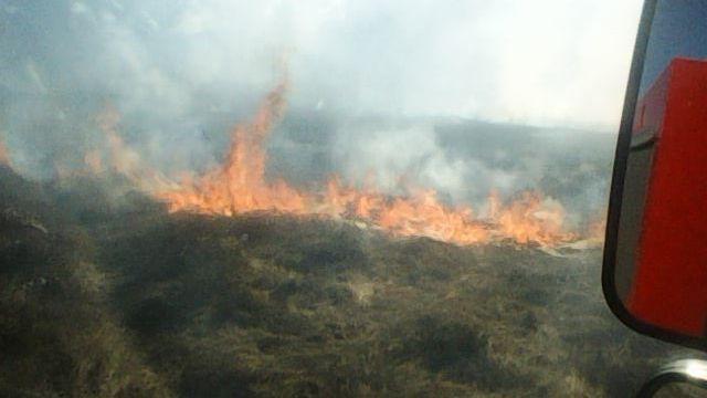 МЧС напоминает: выжигание сухой растительности запрещено буквой закона!