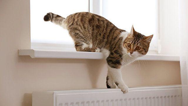 В Крыму объяснили, как регулировать температуру отопления в квартирах
