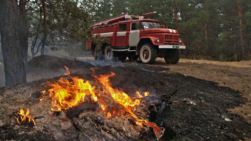 Находясь в лесу, помните об осторожном обращении с огнём!