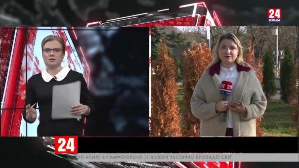 В Комсомольском парке Керчи погибают молодые туи